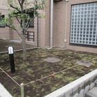 川崎区 芝張り作業